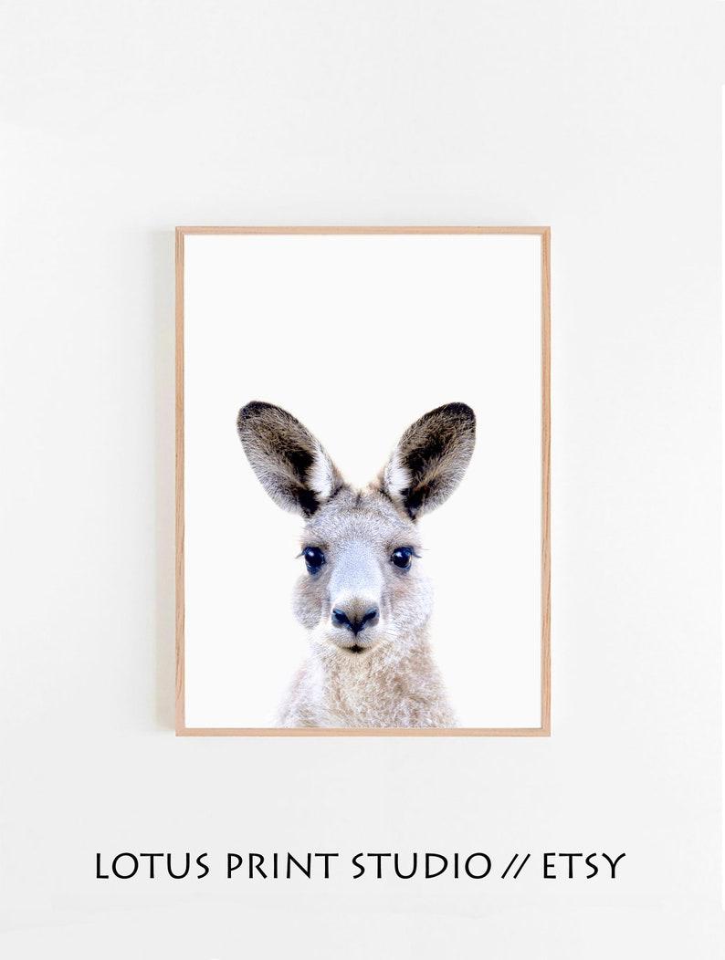 Black and White Nursery Decor Nursery Animal Kangaroo Wall Art Print Australian Animal Poster Animal Digital Print Kangaroo Printable