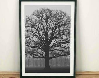 Tree Print, Tree Photography, Wooden Tree Print, Black and White Print, Minimalist Print, Lonely Tree, Tree Printable, Tree Wall Art Decor