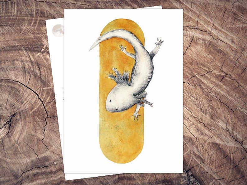 Hello Axolotl  Animal Welfare Postcard Illustration A6 print image 0