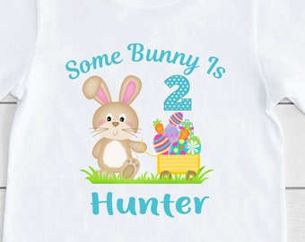 Bunny Birthday Shirt or Bodysuit Some Bunny is One Bunny 1st Birthday
