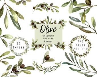 Greenery Frames and Wreaths, Olive Branch Wreath Clipart, Wedding Greens, Leaves, Green Wedding Clip Art, Watercolor Clipart