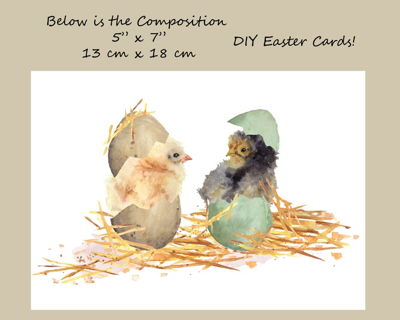 Baby chicks and eggs Five different chicks hand painted watercolor DIY Easter Cards Easter eggs and Easter chicks