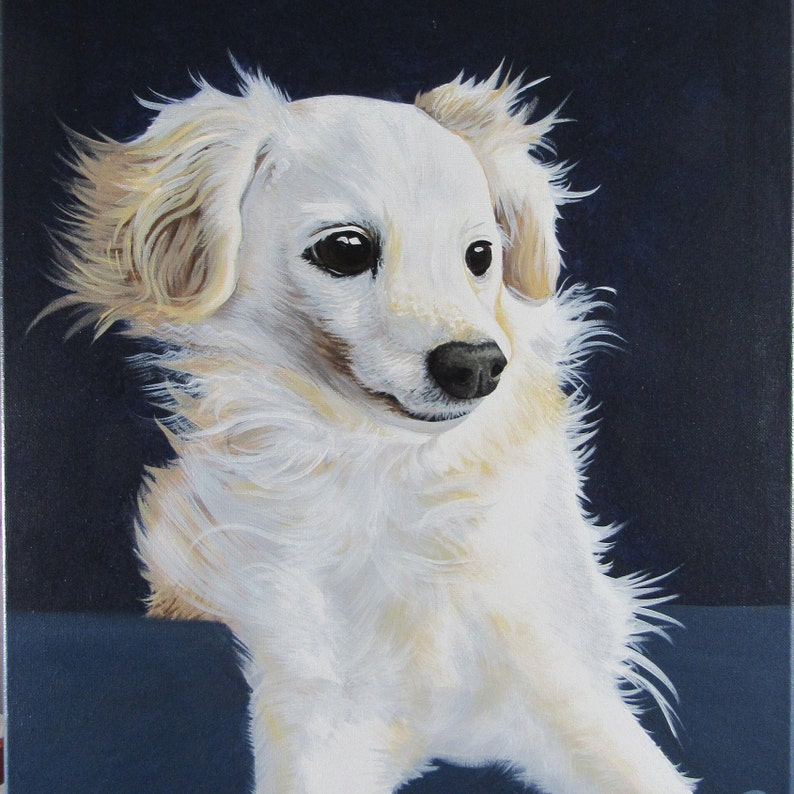 Pet Portrait 12in x 12in