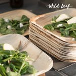 """Disposable Palm Leaf Plates, 25 Pack / 8"""". Compostable, Biodegradable Heavy Duty Appetizer Party Plates - Comparable to Bamboo Wood Fiber"""