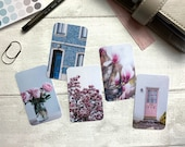 Journal Cards - Blue Magnolia Set - 5 Pack for Planner Deco - Use as Bookmarks, Decoration - Clip and Card Holder Options