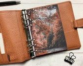 Autumn River Trees Dashboard - Fits A5, B6, Personal Wide, Personal, A6, Pocket, Mini Ring Planners. Protective Cover.