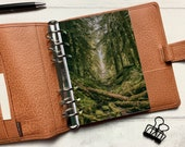 Autumn Moss Forest Dashboard - Fits A5, B6, Personal Wide, Personal, A6, Pocket, Mini Ring Planners. Protective Cover.