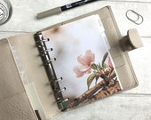 Single Pink Blossom Flower Dashboard - Fits A5, B6, Personal Wide, Personal, A6, Pocket, Mini Ring Planners. Protective Cover.