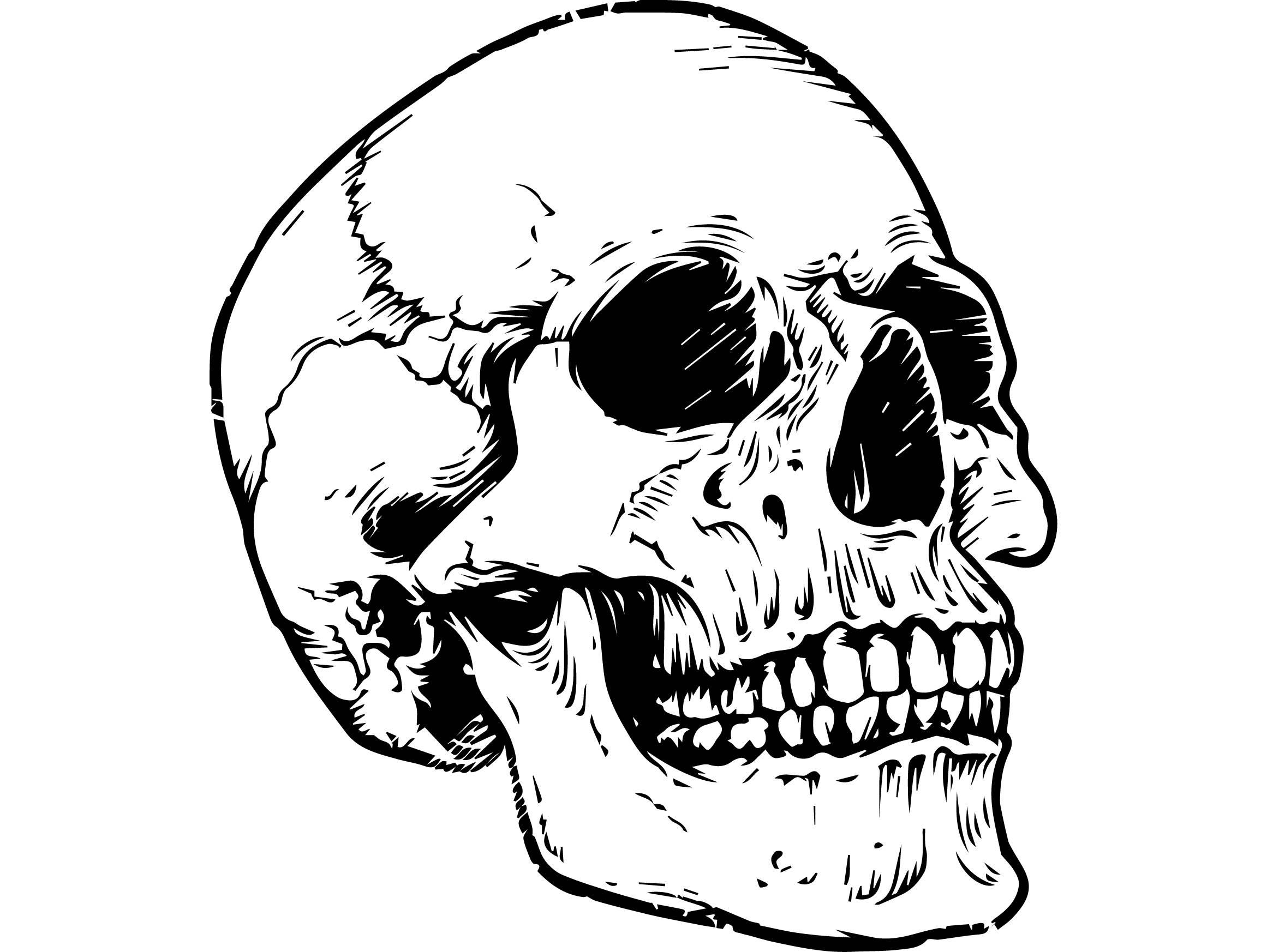 прикольный рисунок черепа создает миниатюрные