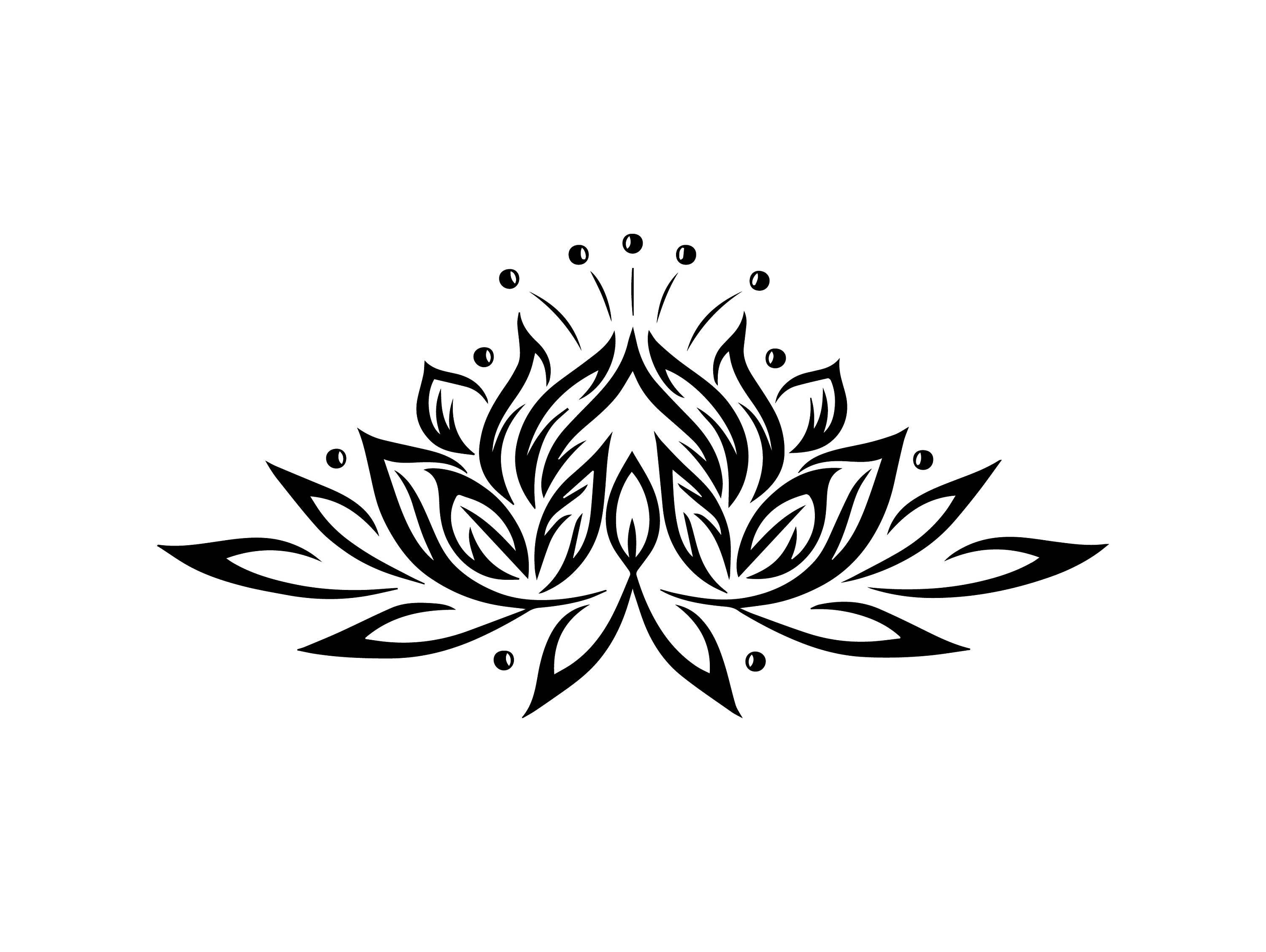 lotus flower nature beauty plant floral blossom bloom yoga spa