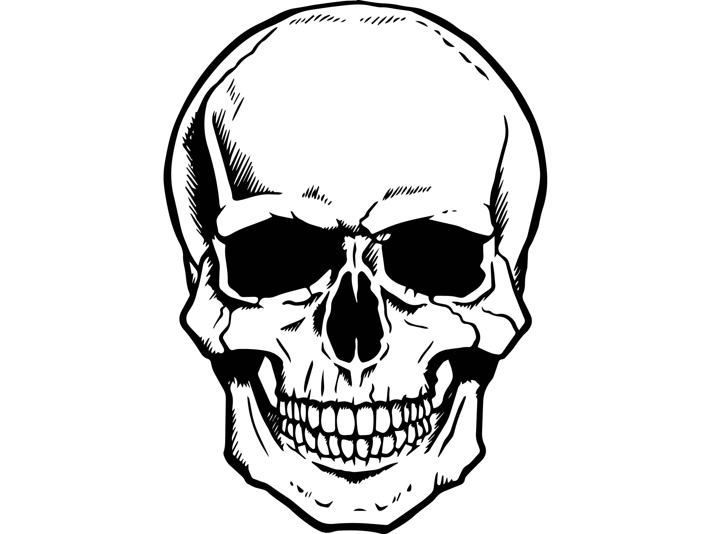 skull head dead skeleton death bone art human horror halloween