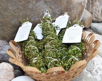 Chaparral (Creosote, Larrea tridentata) shower bundles