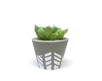 Small, wide concrete planter, white stripes