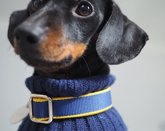 50% OFF Navy Blue and Yellow Strong Striped Dog / Puppy Collar | Small to Medium Sized Dogs