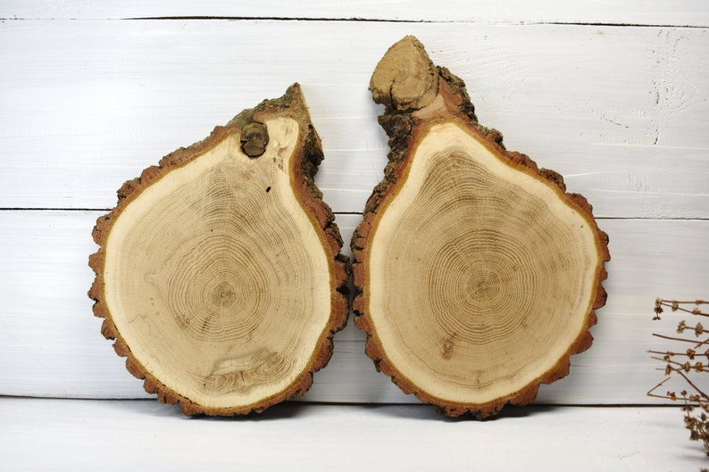 Baby Shower Decor Wood Slab Wedding Decoration Wood Slices Natural Slice Cupcake Stand Wood 9/'/' Acacia Wood Slice For Centerpieces