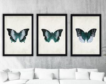 ca042bbf7 butterfly wall art, butterflies wall art, butterfly print, butterflies  print, vintage butterfly, vintage wall art, vintage print