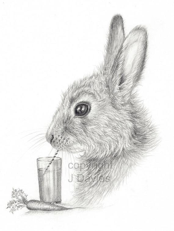Rabbit Print Rabbit Pencil Drawing Rabbit Artwork Rabbit Etsy