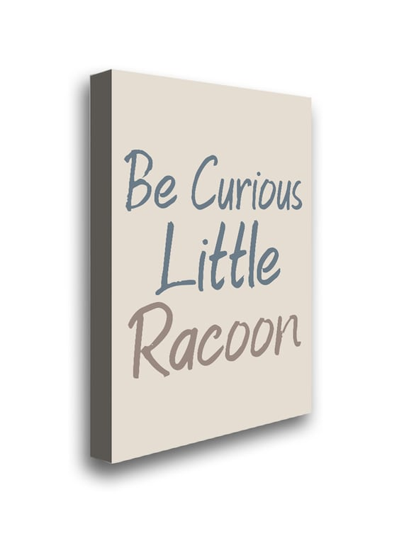 Raccoon Printed Picture Be Curious Quotes Funny Little Raccoon Framed Canvas Poster Art Quotes Canvas Art Kids Motivational Poster