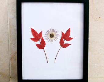 Framed Pressed Daisy and Red Leaves