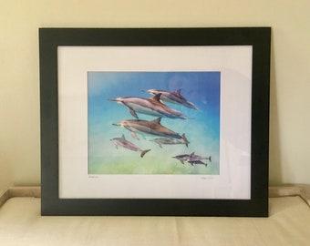 Ohana - Dolphin pod, dolphin photography, dolphin art, Hawaii art