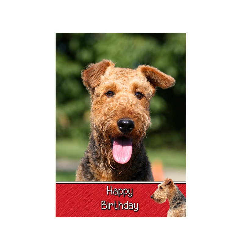 Personalised Airedale Dog Birthday Greeting Card