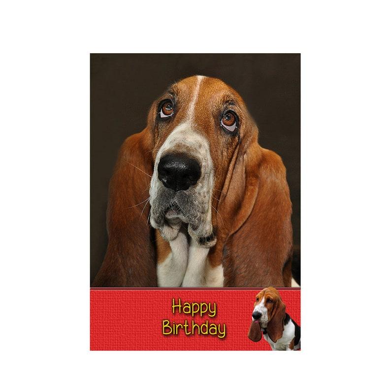 Personalised Basset Hound Dog Birthday Greeting Card