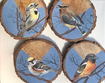 Hand Painted Bird Wood Slice Coasters