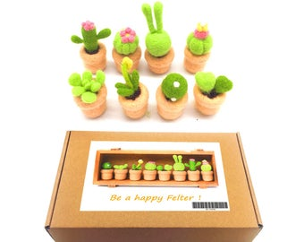 8 Pack Succulent Felting Kits Merino Wool With 3 Needles, 1 Pair Leather Gloves, 1 Foam Mat, 8 Tutorials