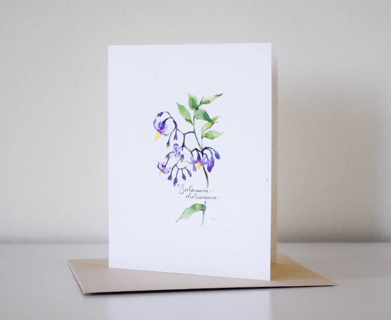 Nightshade Blank Notecard Botanical Watercolor Print A2 Card Wildflower Stationery