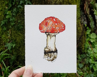 Toadstool #1 • PRINT from an original watercolour by Laura Coughlan