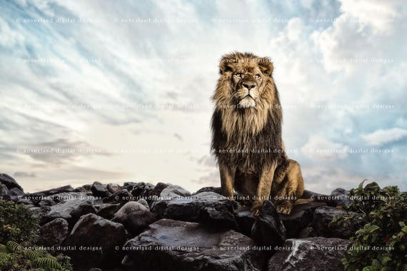 15x10ft Lion Backdrop Photography Props Photo Background Studio Banner Room Wall Murals LYFU470