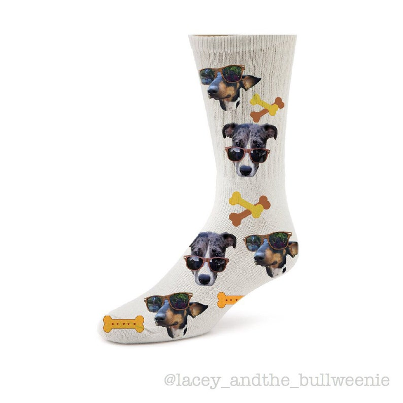 GIFT BAG CHIHUAHUA DADDY PRINTED SOCKS BIRTHDAY FATHERS DAY  PRESENT DAD MENS