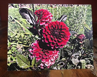 Bright Red Flower Note Card