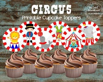 Decorazioni Da Tavolo Per Compleanno : Set completi per le feste circo carnevale più grande showman festa