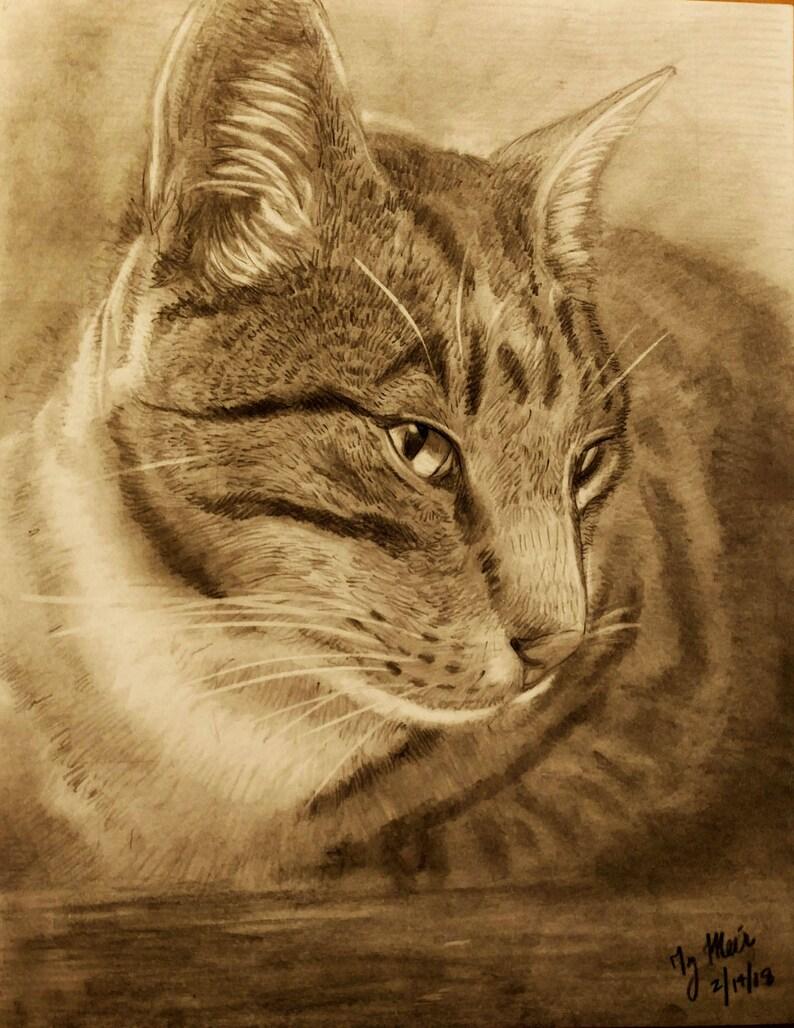 Custom Pet Portrait Drawing: Let me draw your cat dog horse image 0