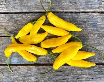 Lemon Drop Heirloom Hot Pepper Seeds / Packet of 20 Seeds / Organically Grown Premium Heirloom Pepper Seeds