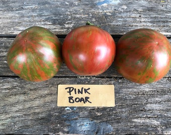 Pink Boar Open Pollinated Tomato Seeds / Organically Grown  / Packet of 20 Seeds  / Premium Heirloom Tomato Seeds