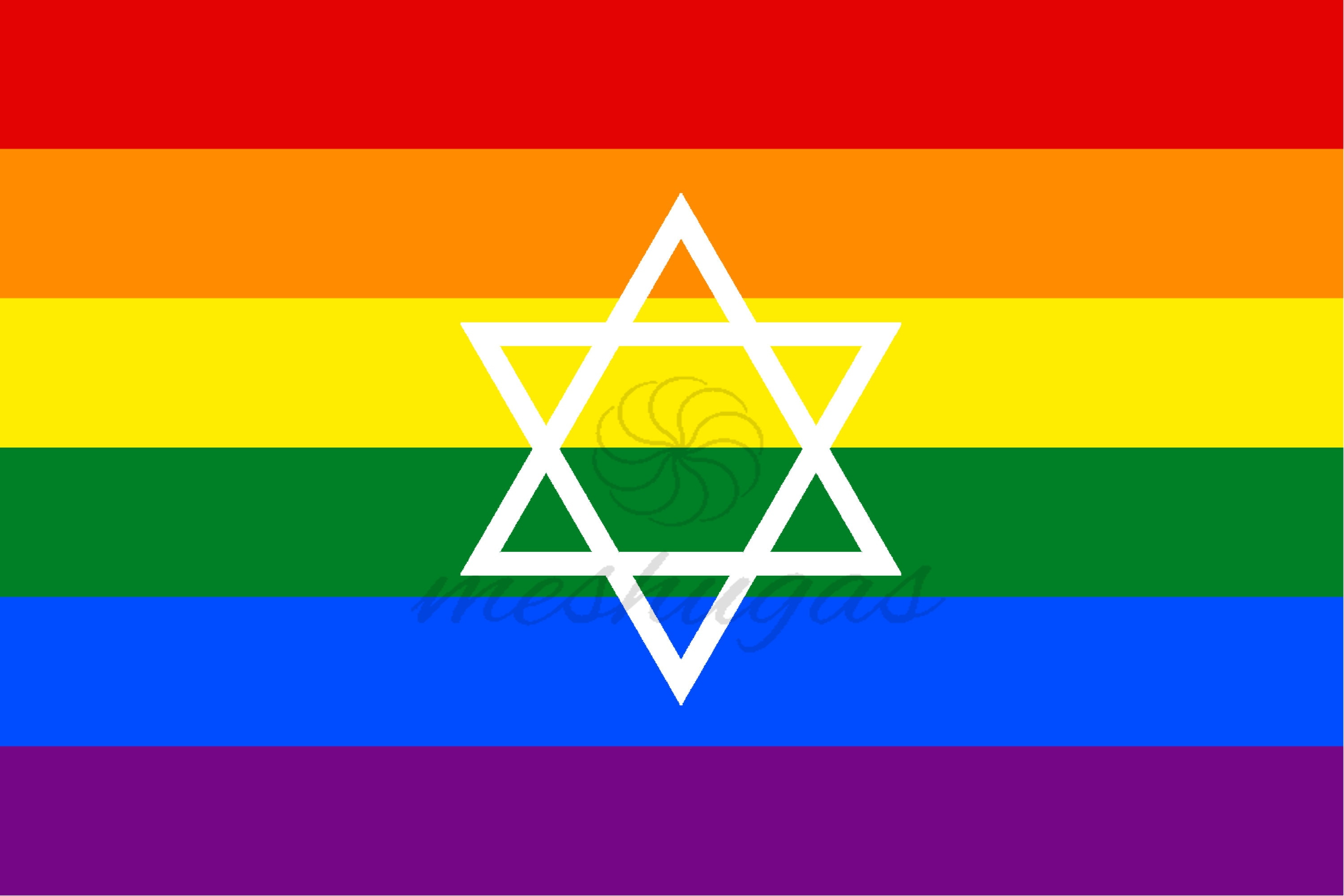Bold Jewish Pride Flag with Small Star of David | Etsy