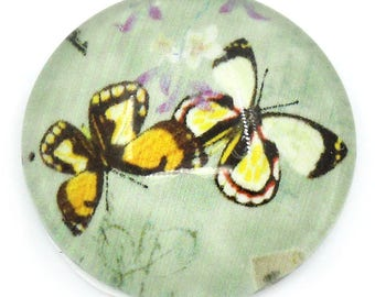 1 cabochon glass round 16 mm diam Butterfly pattern