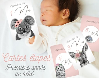 12 Steps Cards - Baby's First Year - Pink Animal Drawing Theme