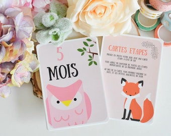 12 Steps Cards - Baby's First Year - Animal Theme