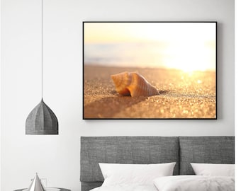 Sandy Beach Photograph | Digital Download | Sunrise Photo | Beach Print | Beach Decor | Shell at Sunrise on Sandy Beach Photograph