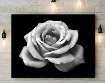 Black White Flower   Rose   Digital Art Print   Printable Wall Art   Modern Home Decor   Rose Photo   Black and White Flower Print