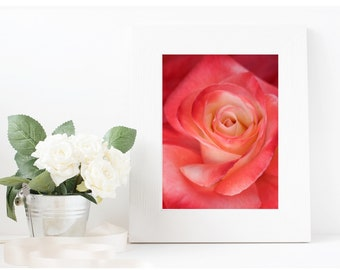 PINK WALL ART | Pink Rose Print | Boho Decor | Pink Decor | Rose Photograph | Fine Art Photography | Printable Wall Art | Digital Download