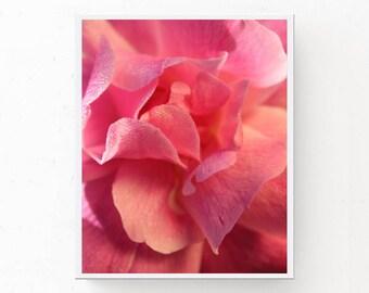 Pink Wall Art, Pink Petals Print, PINK PRINTABLE, Petals and Dew Drops, Pink Art Download, Pink Bedroom Art, Pink Photograph Pink Wall Decor