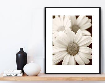 Sepia Prints - Daisies, SEPIA WALL ART, Flowers, Contemporary Wall Art, Boho Decor, Digital Art Print, Printable Wall Art, Sepia, Daisy