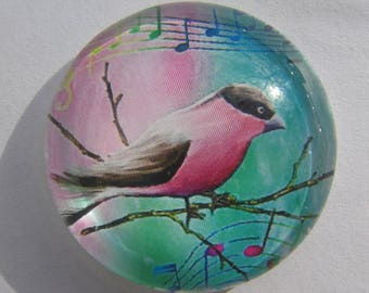 Glass cabochon round 18 mm with a Blue Bird image