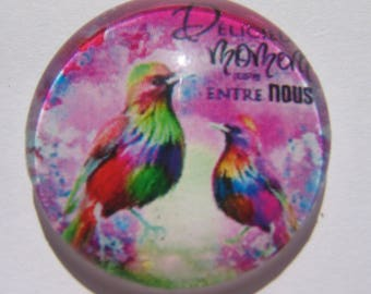 Cabochon 25 mm round domed with a multicolored bird image