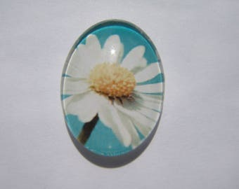Glass cabochon oval 25 X 18 mm with daisy image