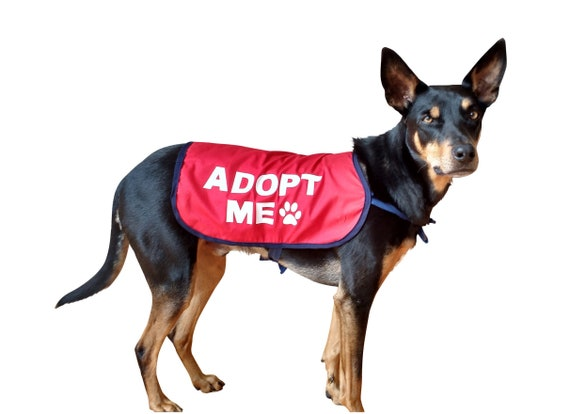 PLEASE ADOPT ME PUPPIES ~  OPTIONAL SIZES AVAILABLE! 63 STICKER LABELS
